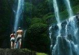 Private tour: Sekumpul waterfalls trekking tour