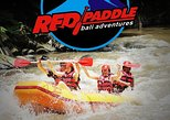 All Inclusive River Rafting, Monkey Forest, Coffee farm, waterfall tour
