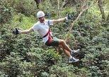 Managua a Mombacho Volcán Zipline Canopy Tour con Admisión. Managua, NICARAGUA