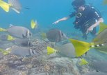 Try Scuba Diving Tour for Beginners