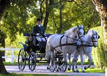 Lipica Stud Farm- The Cradle of Lipizzaner- Private Experience from Trieste