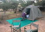 2 day tented Pilanesberg safari from Johannesburg