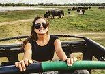 4 Day Tour to Kandy Nuwara Eliya Ella & udawalawe safari from Colombo