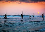 Galle Day Tour with Stilt Fishing Experience from Negombo