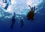 Sunset Plankton Eco Snorkel Tour from Phi Phi Island