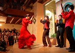 Flamenco Show at Casa de la Memoria Admission Ticket