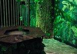 Amazon Survival Escape Room