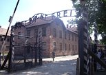 Auschwitz-Birkenau and Wieliczka Salt Mine Museum Shared Guided Tour from Krakow