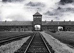 1 Day Auschwitz-Birkenau Guided Tour from Krakow