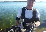 Coffin Bay Oyster Farm & Tasting Tour