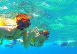 Paradise Cove Day Pass Or Snorkel Only with Transport from Freeport