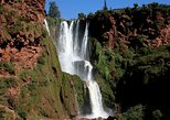 Ouzoud Waterfalls from Marrakech Day Trip