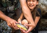 Family Fun Private Half Day Fly Fishing Adventure