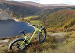 Wicklow Ballinastoe - Half Day Bike Tour