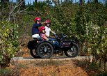 Private Tour: Algarve Wine and Tapas Tour by Sidecar Motorcycle from Portimao