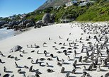 15-day Cape Town to Kruger Park & Swaziland one way, or 17-day return Safari
