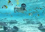 Bora Bora Snorkel Cruise Including Snorkeling with Sharks and Stingrays