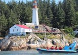 Vancouver City and Seals Scenic Boat Tour