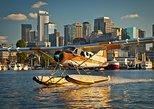Seattle Seaplane Flightseeing Tour from Lake Union