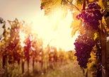 Private Tour: Ribatejo Region with Wine Tasting