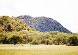 2 Days Wildlife Erindi Game Range (Camping) Namibia