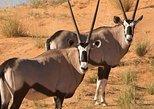 10 Days Wilderness Safari Namibia (Camping)