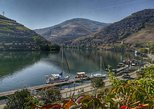 Douro Valley Tour with visit and tasting at 2 Port wine farms and boat cruise