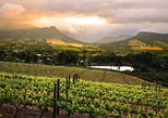 Cape Town: Cape Winelands Full Day Tour with Wine & Cheese Tastings