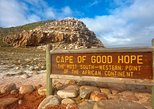Cape Town: Morning Cape Peninsula Tour