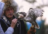 Big Almaty Lake Private Tour, Inclusive of Falcon Show, Lunch & Hotel Pickup