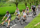 Bali Bike Tour: Kintamani Ubud Downhill