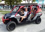 3 Hour (4 passenger) Buggy City Tour with Beach Break Inclusive of Lunch