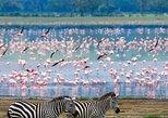 2 Full Days Lake Naivasha Hell's Gate Safari