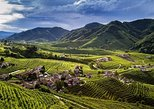 Wine tour & tasting - Prosecco Experience