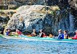 Victoria Harbour Kayak Tour
