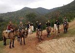 Horseback Riding and Ranch Day Trip with Lunch from Valparaiso