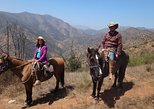 Half-Day Horseback Riding Tour from Santiago