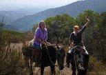 Horseback Riding Tour in the Chilean Precordillera from Valparaiso