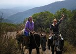 Chilean Precordillera Horseback Ride from Santiago