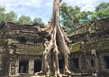 Asia - Cambodia: Private Angkor Wat Tour Guide To Angkor Wat, Bayon, TaProhm & Bantey Srei Temple