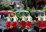 Cambodian Culture Village from Siem Reap (Attraction Ticket)