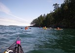 2-Hour Swartz Bay Kayak Tour and Restaurant Lunch