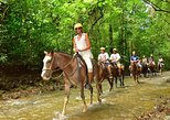Horseback Riding and Waterfall Tour