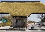 7 Days-Desert adventure, Swakopmund & Etosha Lodging Tour