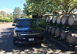 8-Hours San Francisco to Napa CA Private Ford FLEX Crossover up to 6 People