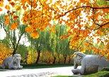 Asien - China: Privater Tagesausflug: Chinesische Mauer bei Mutianyu und Ming-Gräber