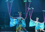 VIP Seated Acrobatics Show plus Ding Tai Fung Dinner Experience in Beijing
