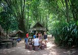Morning Cu Chi Tunnels Tour from Ho Chi Minh City