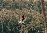 Ubud Jungle Swing with free Coffee Testing & Return Transfer