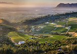 Constantia Wine & Braai Experience